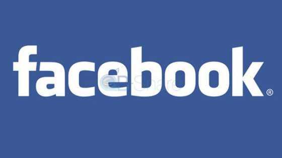 לוגו פייסבוק. עיבוד: פייסבוק